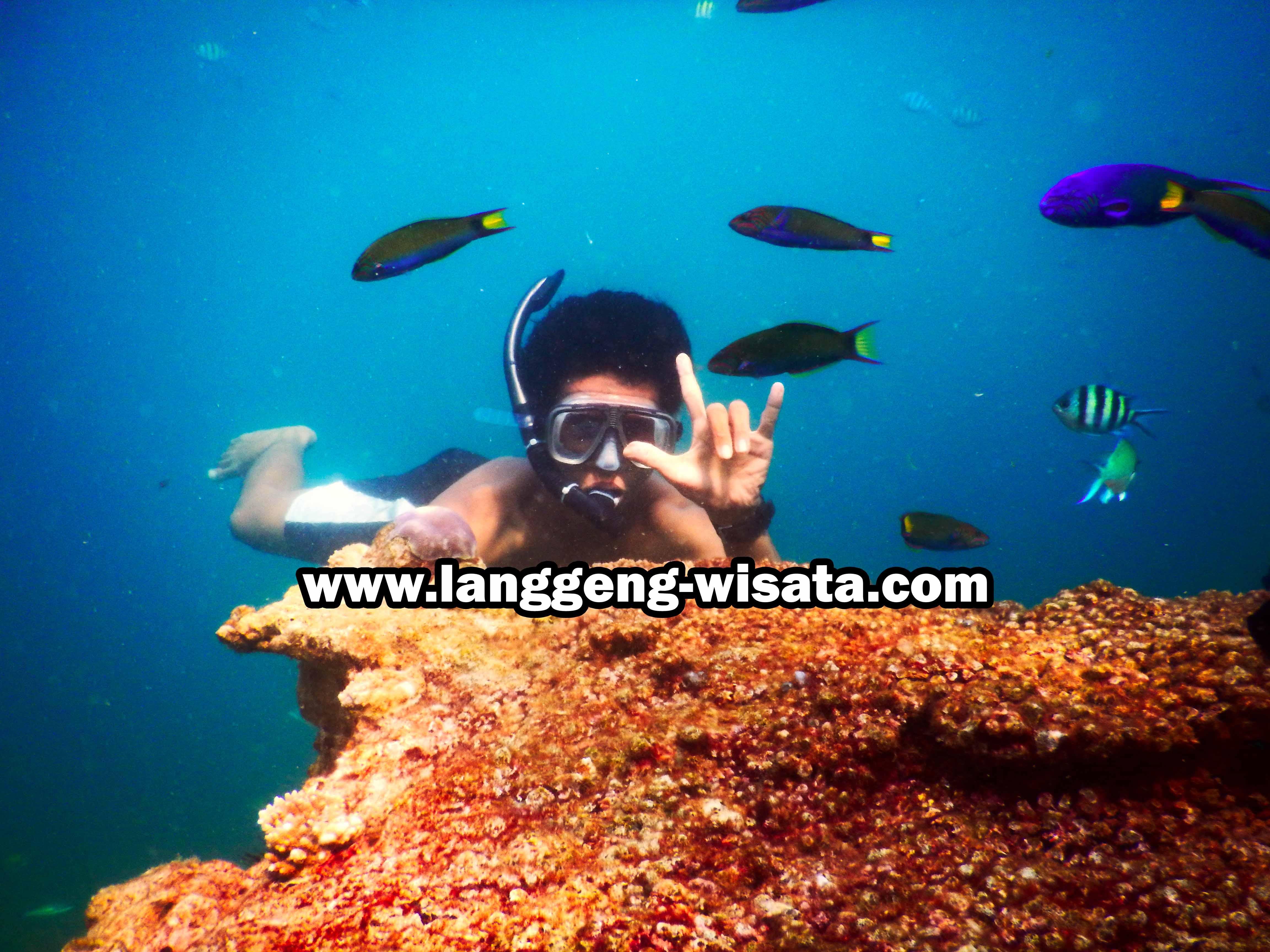 Paket Wisata Pulau Pari 1 Hari indonesia