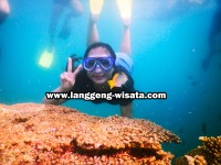 Paket Wisata Pulau Pari Dari Marina Ancol indonesia