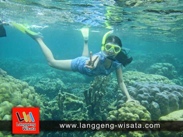 paket wisata pulau pahawang dari bandar lampung indonesia
